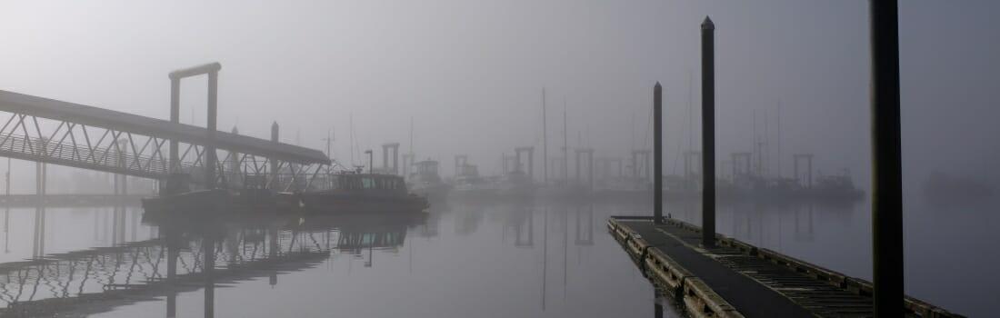 Fog at Statter Harbor